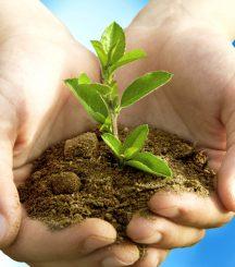 Dịch vụ liên kết kiểm tra thiết bị, đánh giá tác động môi trường